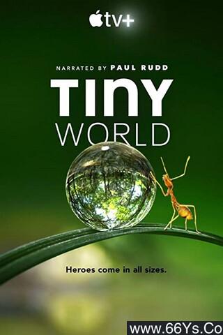 《小小世界》下载_迅雷下载_纪录片_电影岛屿网