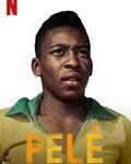 球王贝利:巴西足球传奇