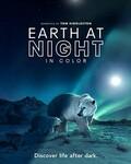 夜色中的地球