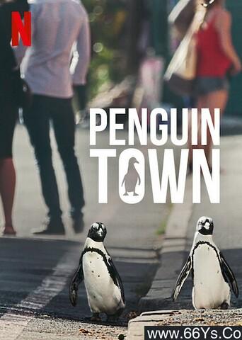 《企鹅小镇》下载_迅雷下载_纪录片_电影岛屿网